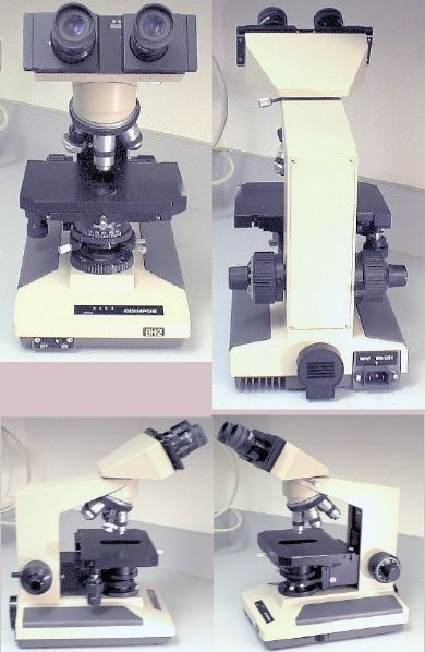 Picture of: olympus microscope model bh2 / binocular bh-2 and tech talk, comments, help & reviews.